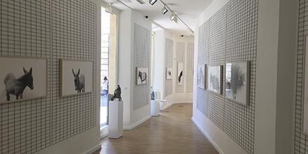 Interior Galería Benot & Cristalarte