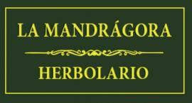 MARCO LOGO WEB