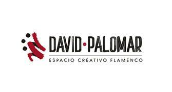LOGO ECF DAVID PALOMAR